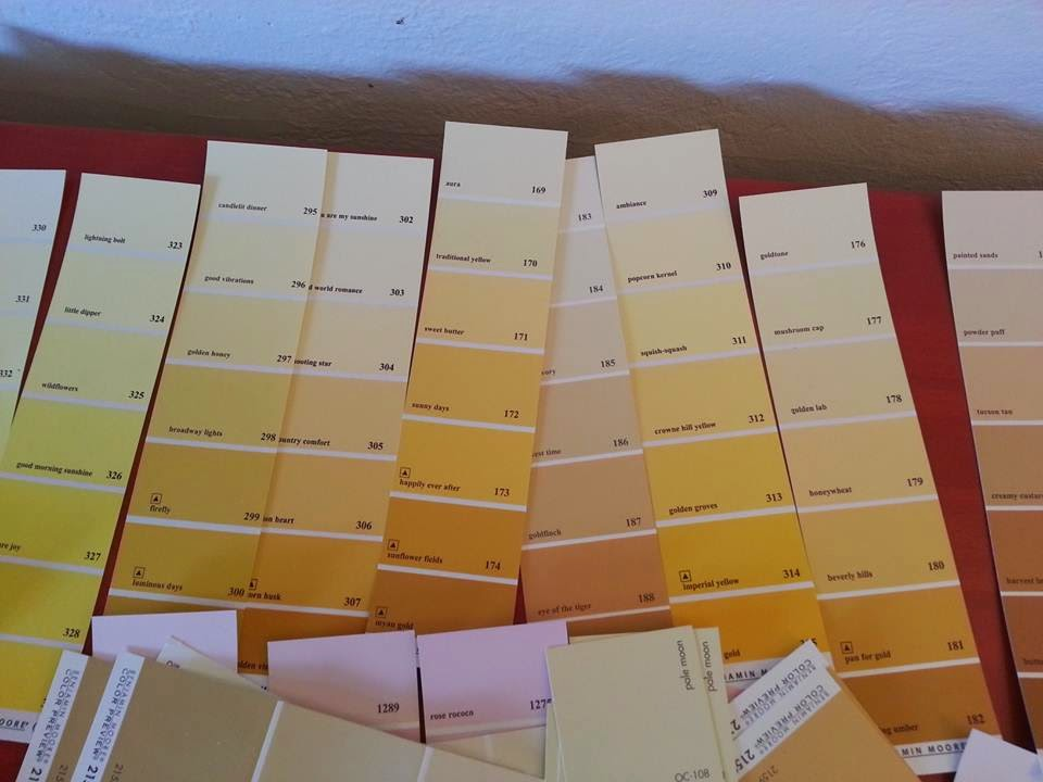 Is everything you know about picking paint colors wrong? The art and science of selecting paint colors. Northern Lights Home Staging and Design