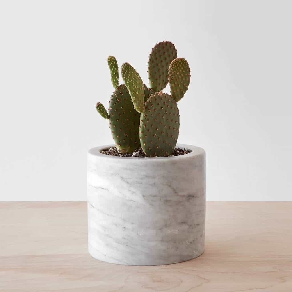 PUEBLA MARBLE PLANTER . Photo from The Citizenry #affiliate
