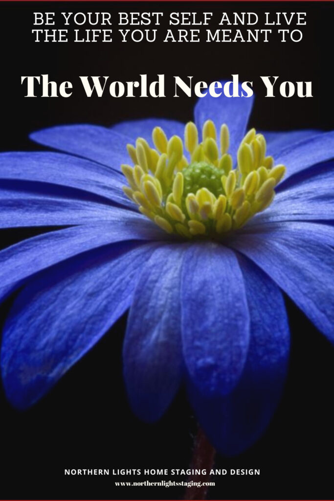Learn to Be Your Best Self and Live the Life You Were Meant to- The World Needs You.