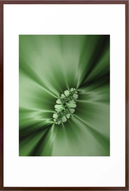 Spring Fractal Art by Northern Lights Home Staging and Design