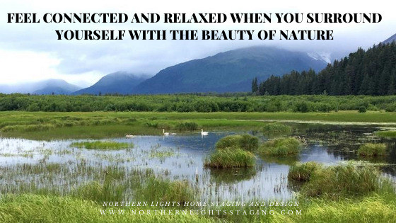 Feel Connected and Relaxed When You Surround Yourself With the Beauty of Nature