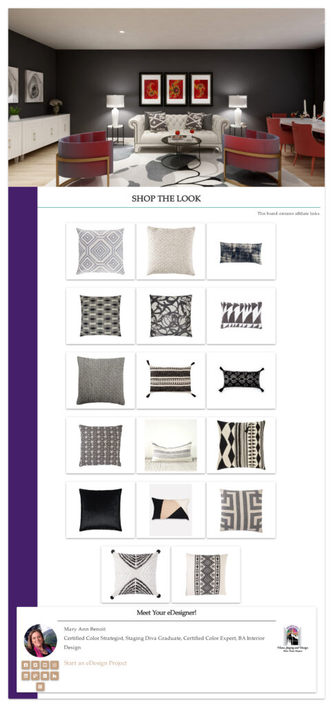Black and White Global Style Pillows