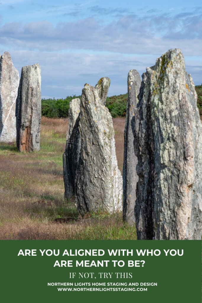 Are You Aligned with Who You are Meant to Be?