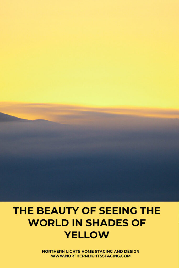 Seeing the Beauty of the World in Shades of Yellow