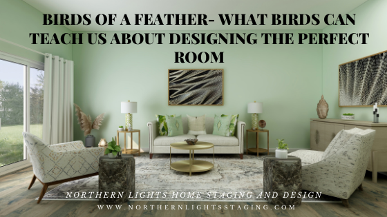 Birds of a Feather- What Birds Can Teach Us About Designing the Perfect Room.