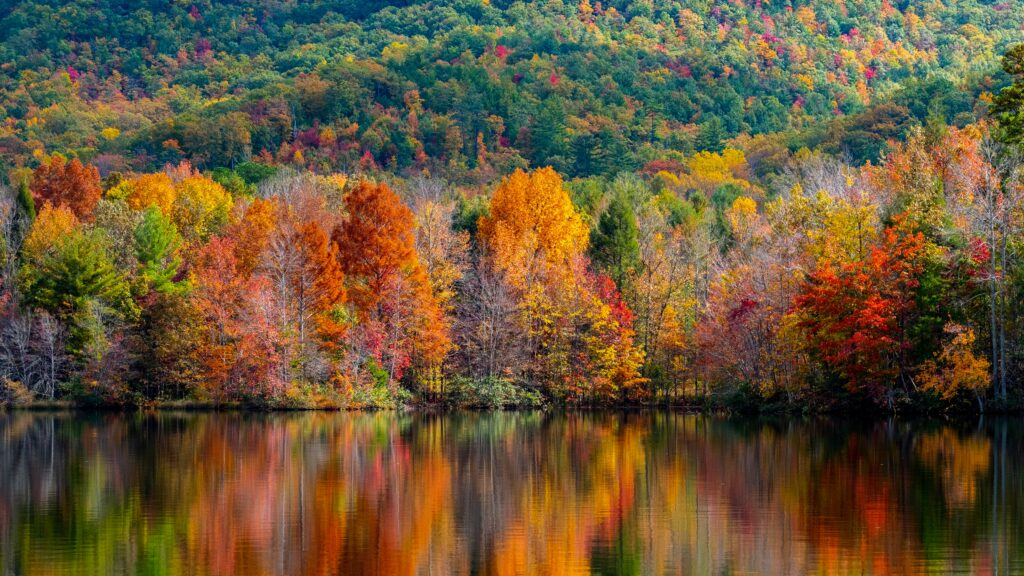 Three Reasons to Change Your Decor in the Fall. Photo by Jeffery Cullman on Unsplash.
